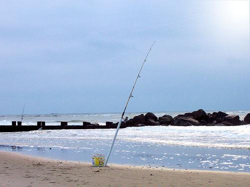 Folly beach sc real estate beach properties homes for Folly beach fishing