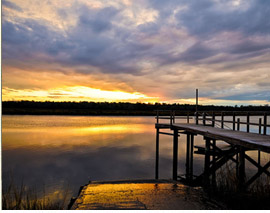 Tidal Creek Charleston SC Real Estate   Residential and