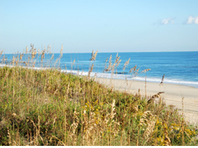 Kiawah Island Real Estate Waterfront Oceanfront And Golf